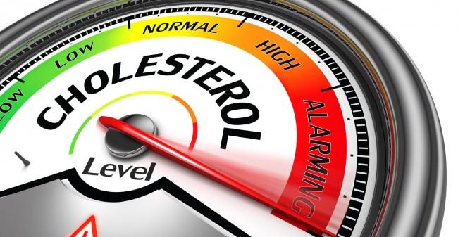 Cholesterol,  een grote weldoener