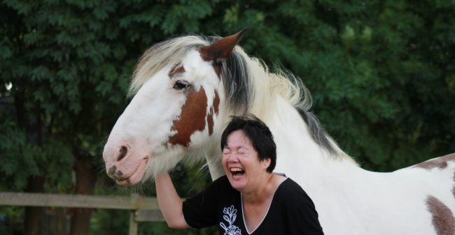 Een paard als coach
