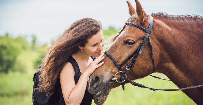 Een paard als co-coach bij stress of burn-out