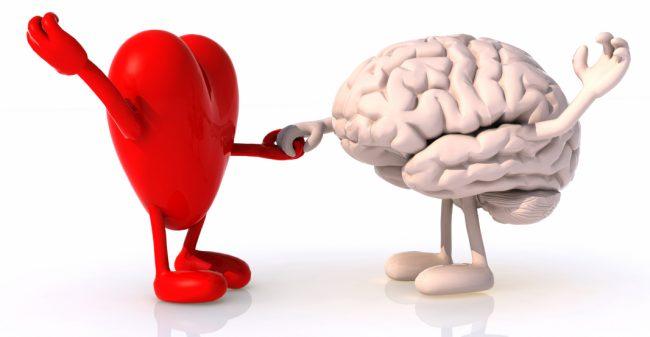 Fitness voor het brein